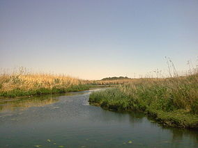 Azraq, Wetland reserve, wikipedia