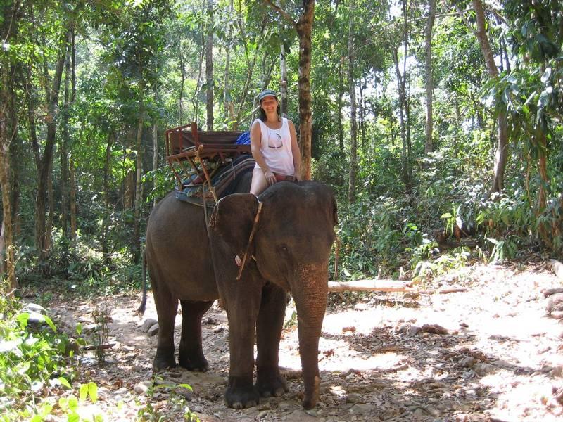 Elephant Ride Through the Rain Forest of Ko  Chang Credit: Doug Erskine