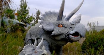 cabezon dinosaure