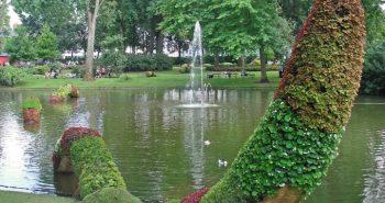 Botanical Garden, Credit flicker