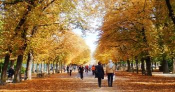 Jardin du Luxembourg, Credit-Sbc.edu