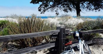 Monterey biking trail