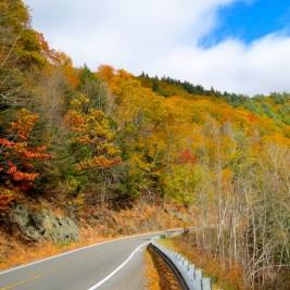 gorgeous scenery as you drive along