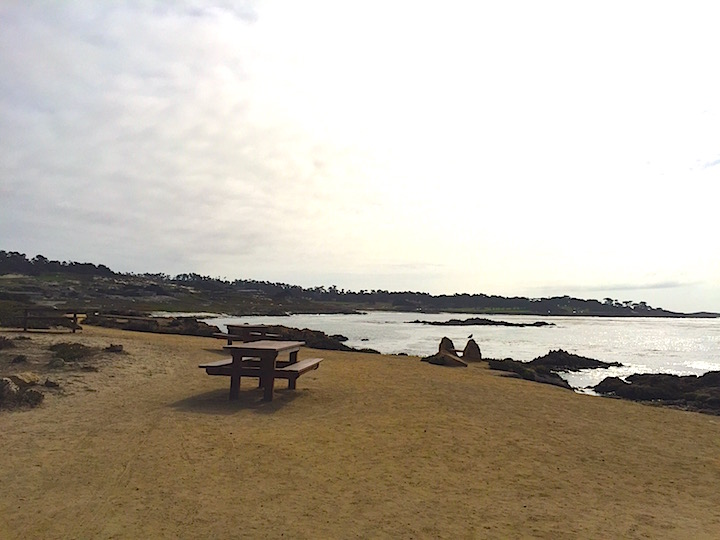 seal rock picnic area