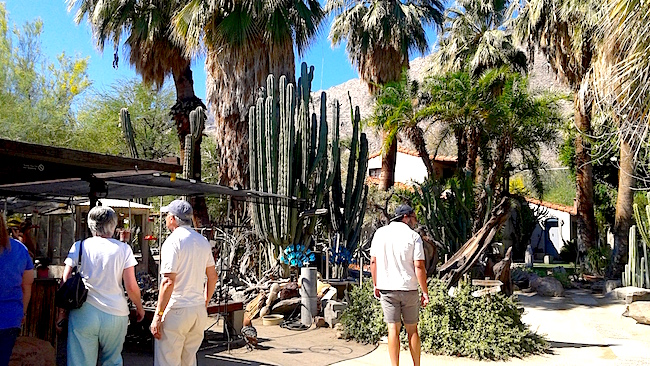Moorten Botanical Garden The Prickliest Gardens In Town