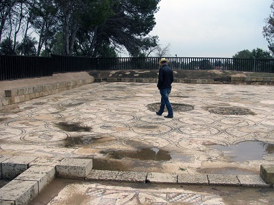 birdhouse: our guide, Danny, explains the well-preserved mosaic floor