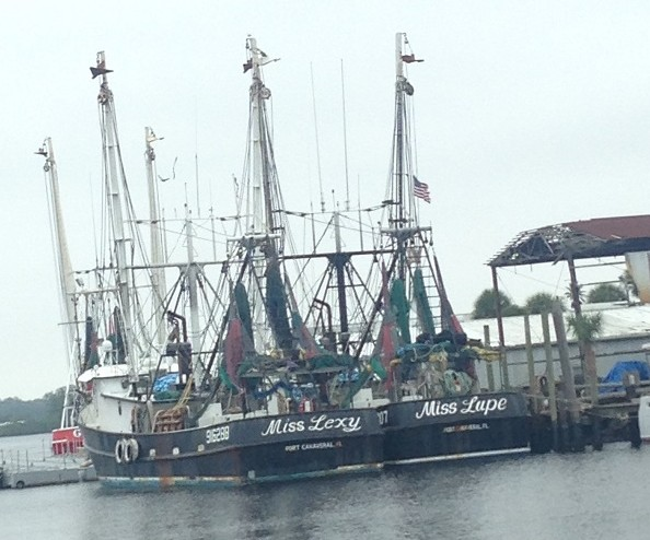 Ships of Tarpon Springs Harbor