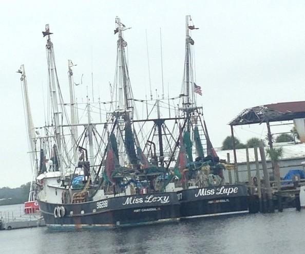 Ships of Tarpon Springs Harbor