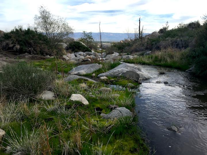 Abundant water