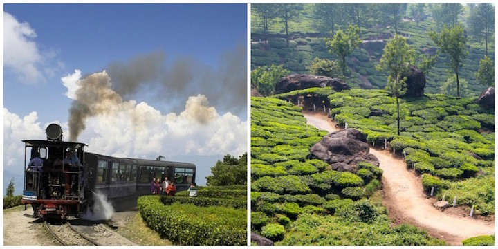 "The ""Toy Train"" (L), tea plantation in Darjeeling (R)"