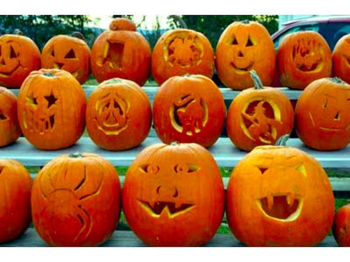 Saybrook pumpkins