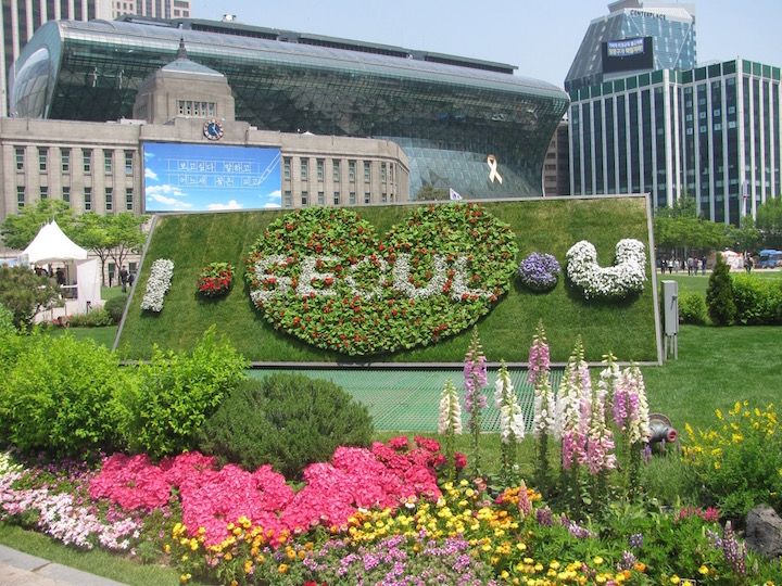 Seoulflower: a floral invitation to Seoul in the City Park in front of the new City Hall