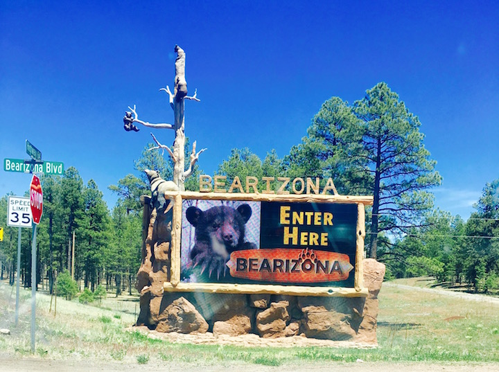 bearizona sign