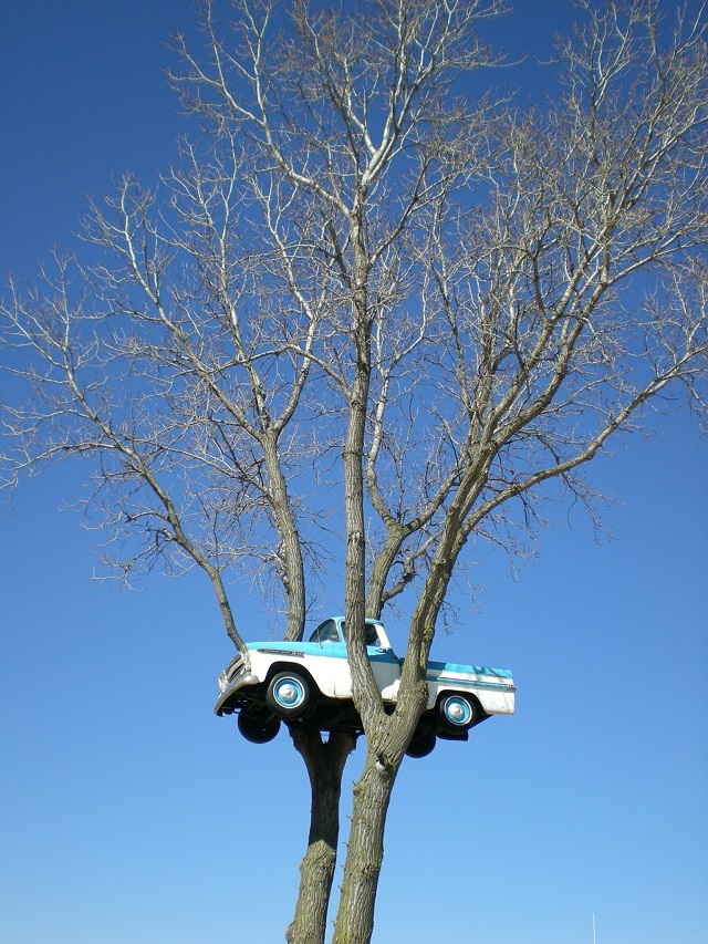 Clinton's Truck in the Tree