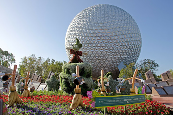 Enjoy the Best Moments at Disney World with Your Pet   Uncharted101.com
