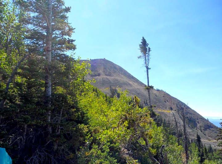 looking up at Hahn's Peak