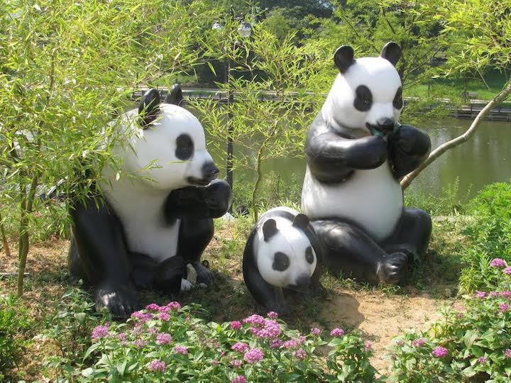 one of the groups of fiber-glass pandas